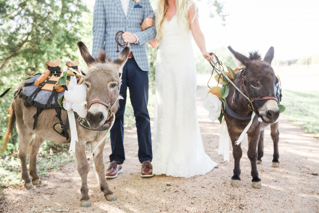 pecan springs ranch wedding 84