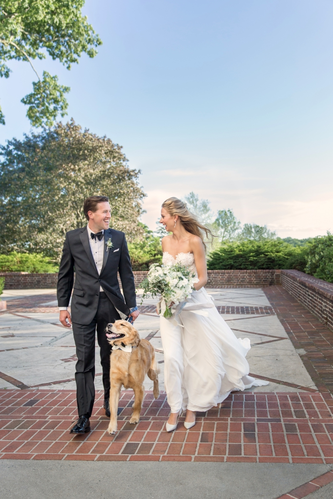 wedding westchester with dog