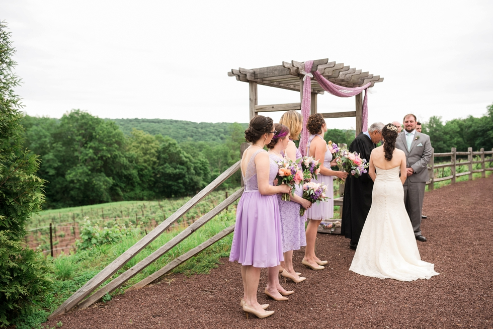 Bucks-County-Sand-Castle-Winery-Wedding_0049