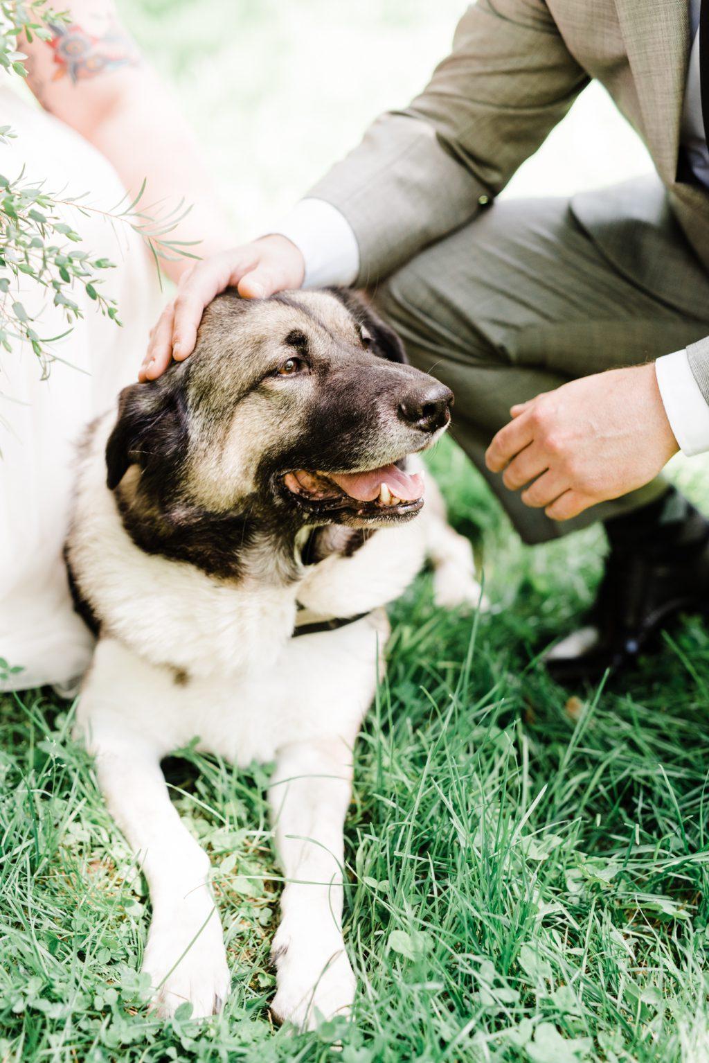 haley-richter-photo-west-chester-summer-wedding-boxcar-brewery-037