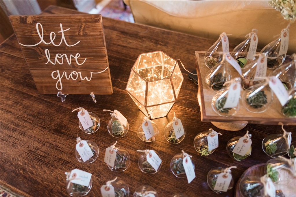 air plant favors at greenville country club wedding