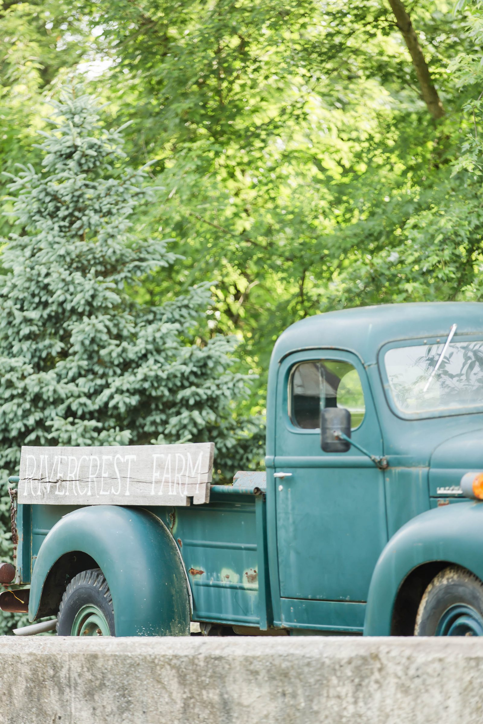 rivercrest-farm-summer-wedding-loren-jackson-photography-94