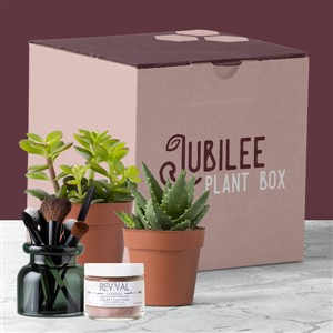 Jubilee Plant Box with succulents and skincare items