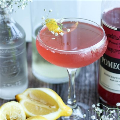 Pomegranate Elderberry Fizz Cocktail