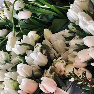 All white tulips for donation by Forget Me Knot Flowers
