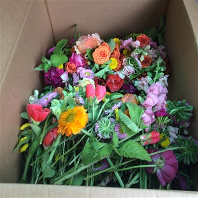 Flowers for donation by Oak and Honey Event Planning