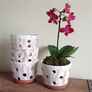 Distressed Orchid Planters by Palmer Planter Company