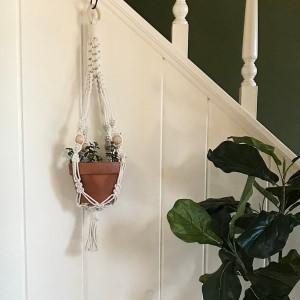 Plant Holder